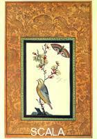 Persian art Miniature with a bird on a branch and a butterfly