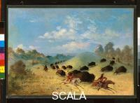 Catlin, George (1796-1872) Comanche Indians Chasing Buffalo with Lances and Bows, 1846-1848